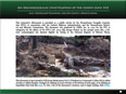 Archaeological Investigations of the Joseph Lewis Site (36Ch859)